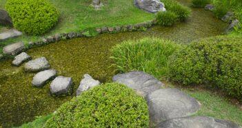 Velplejet have